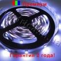Светодиодная лента SMD 5050-30 премиум
